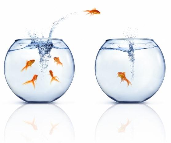 CSE. Quand auront lieu les élections professionnelles dans votre entreprise?
