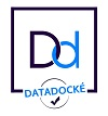 datadocke-success consulting