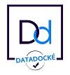 datadocke-success consulting