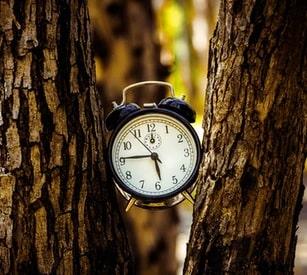 Les délais de consultation du CSE, de transmission et d'expertise réduits