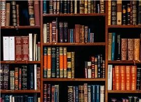 Tous les articles sur… Le droit à la formation des membres du CSE